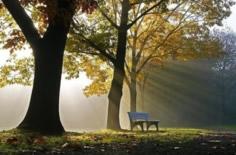 诗 105:4 寻求耶和华意味着什么?(约翰·派博)